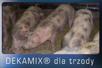 dekamix_trzoda_home