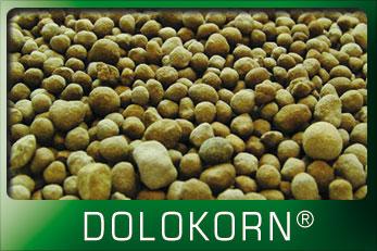 dolokorn_home
